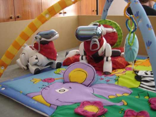 Playground_robot